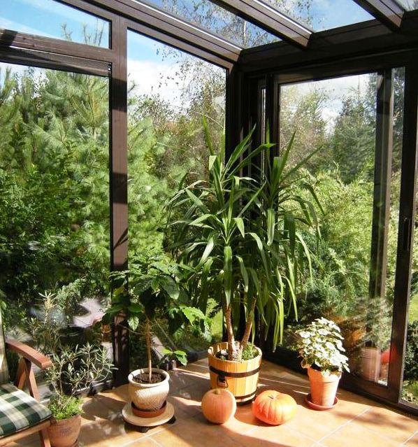 система вентиляции в зимнем саду