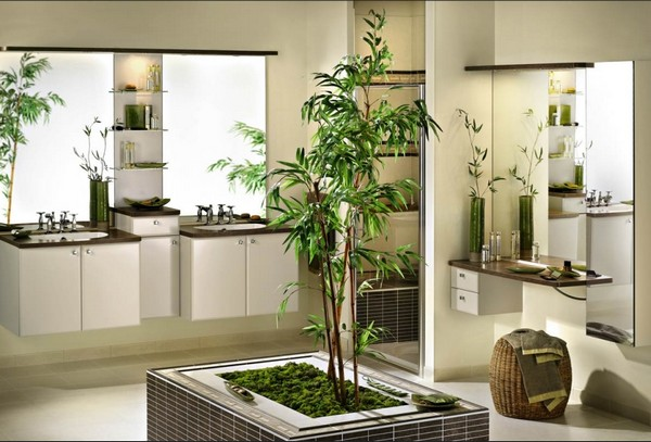 как разместить растения в доме