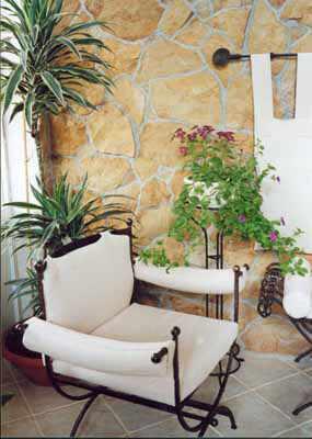 Зеленый уголок — растения в доме