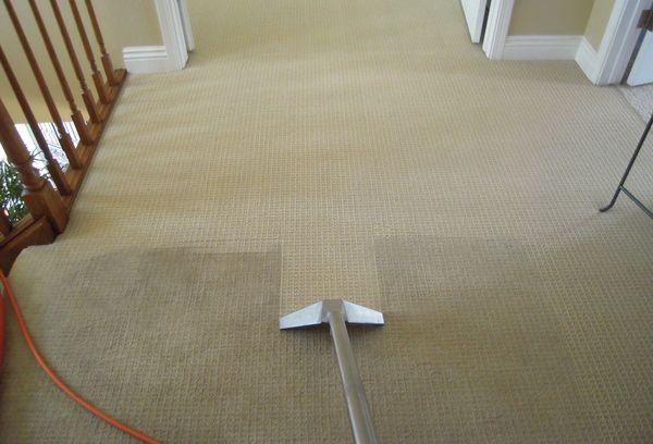 Как помыть ковролин дома на полу