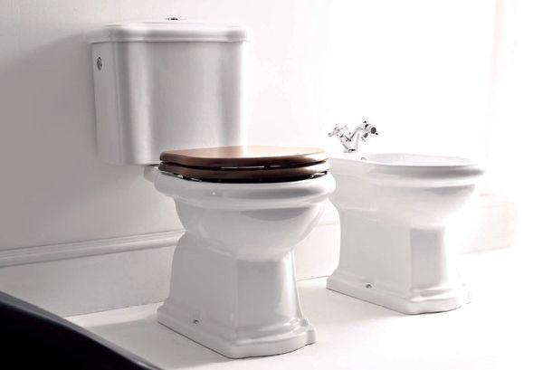 Унитаз: как правильно выбрать сантехническое изделие для домашнего использования?