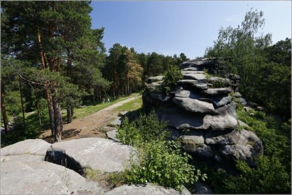 Шарташский лесопарк в Екатеринбурге обойдется 230 миллионов рублей