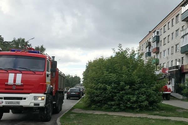 Россиянин сжег квартиру и обвинил в случившемся кота-«курильщика»