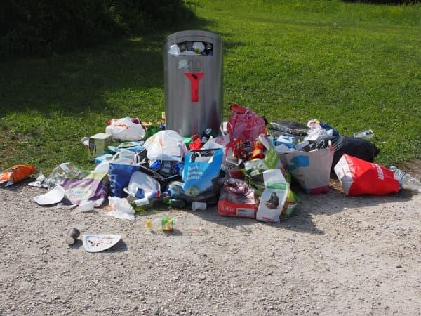 Новые правила сортировки мусора в столице ждут граждан с 2020 году