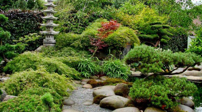 Ландшафтный дизайн: создаем японский сад