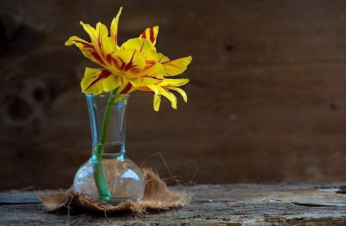Вода для срезанных цветов.