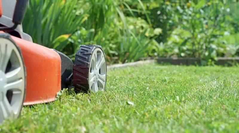 Несколько правил стрижки газона