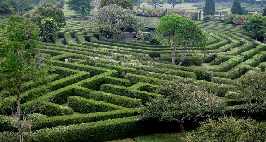 Садовый лабиринт – делаем своими руками!