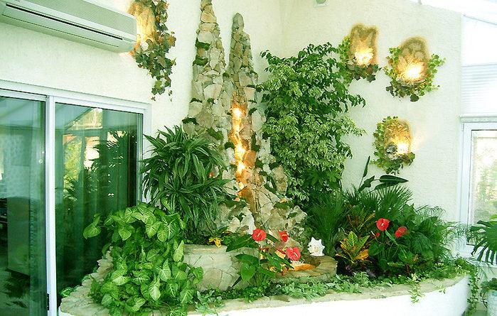 Преимущества домашних растений