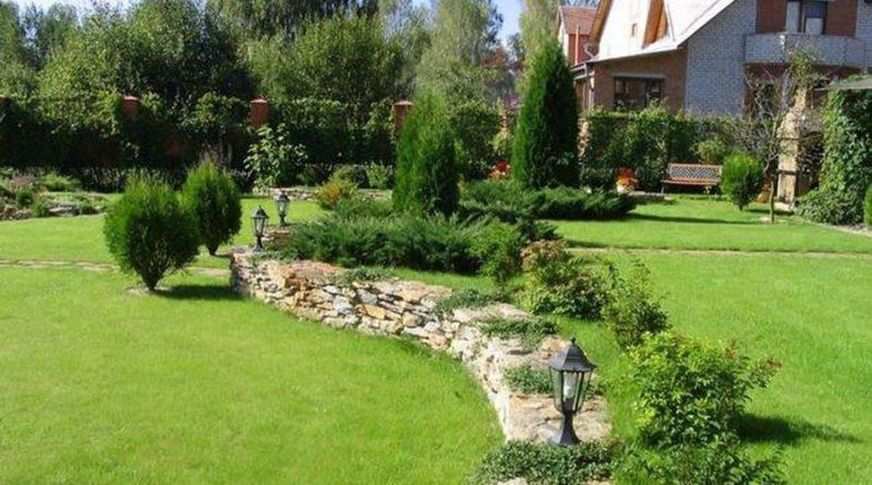 Качественный ландшафтный дизайн – красота и уют сада