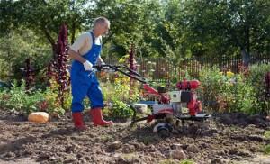 Какая садовая техника нужна в уходе за садом?